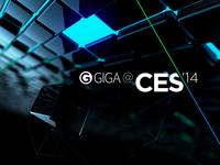 GIGA @ CES '14 – Signation Endtag