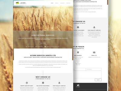 Acorn Services Website