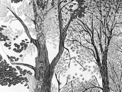 Forest illustration black and white forest tree drawing illustration