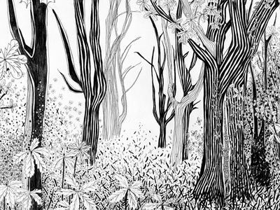 Forest illustration 2 line art abstract graphic art nature tree illustration handdrawn black  white pencil drawing