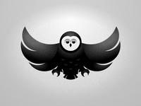 Grainy Owl Round 2