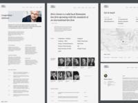 Birisgoran.ro website concept
