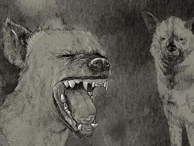Hyena animals wacom tablet digital illustration hyena