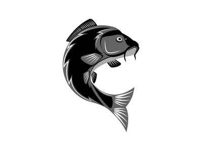 carp logo fish by sergii syzonenko dribbble rh dribbble com corp logo carp login