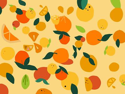 oranges illustration design diseño