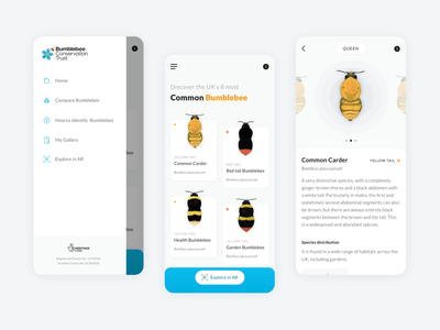 Mobile App for Bumblebee Exploration bumblebee ar productdesign appdesign ux ui mobile app ios app android app minimalist clean