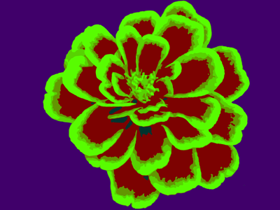Psychedelic Flower nyc flower red green purple psychedelic