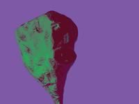 Psychedelic Head (Casa Azul)