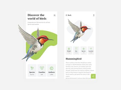 World of birds mobile app app design birds user interface dribbble user experience design clean ux ui