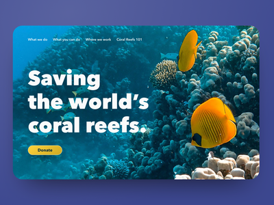 30 Day Challenge - Day 28 nonprofits nonprofit donation donate oceans ocean reef coral reef 30 days of design 30daysofdesign 30 day challenge 30daychallenge hero image hero section hero website web design web ui design ui