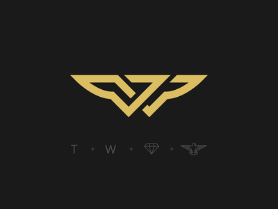 Thunder Wings Logo Mark fly thunder wings travel symbol mark logo design identity gold brand icon branding logo