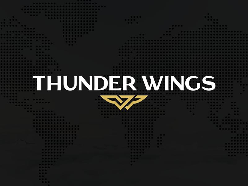 Thunder Wings Logo logo branding icon brand gold identity logo design mark symbol travel thunder wings fly
