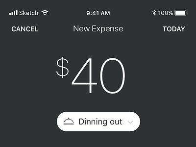 Expenses app concept app ios expenses