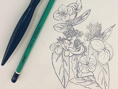 nature art nft sketchbook illustration