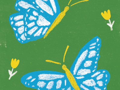 Butterflies design insects colourful butterflies spring nature illustration