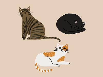 Neighbourhood Cats pencil sketch cut paper collage art animals cats illustration