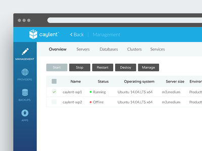 Dashboard // Caylent.com icons template navigation list table web flat ui management panel dashboard