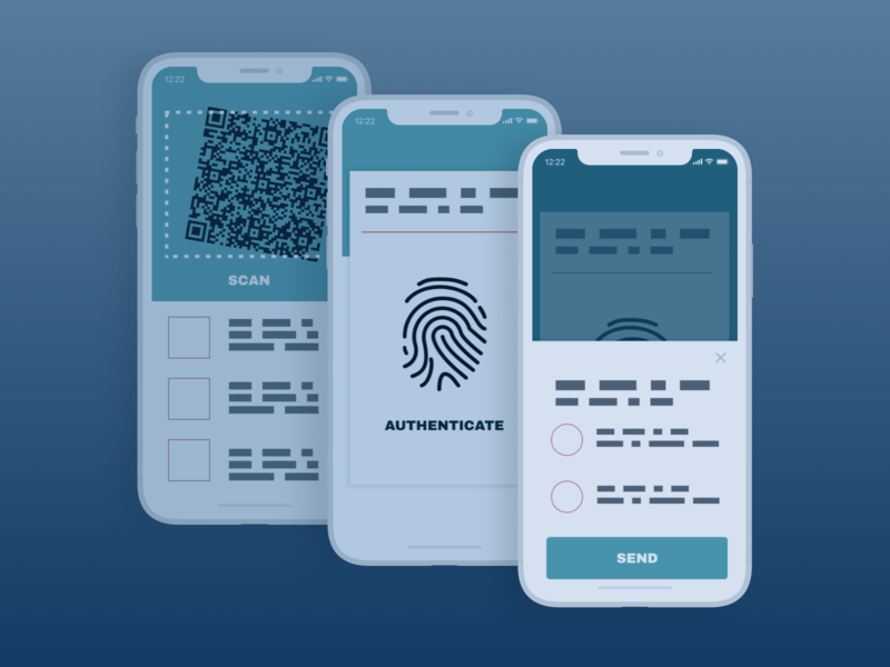 Mobile Payment Auth wireframe mobile app mobile illustation