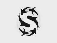 S for Shark