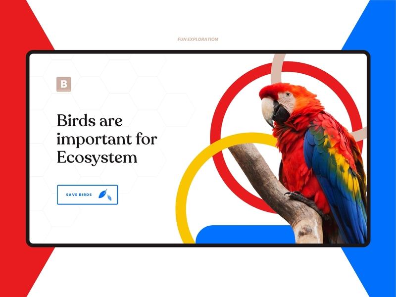 Birdy website uidesign typography website trending simple minimal ux dribbble design ui