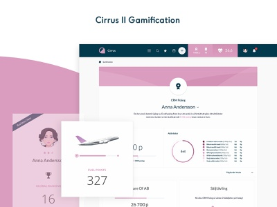 Cirrus 2 Gamification awards gamification ux ui system stats products list infographics design dashboard crm api admin