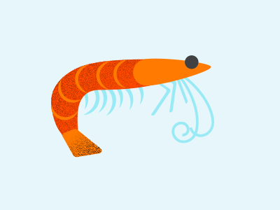 Shrimp shrimp ocean infographics sealife