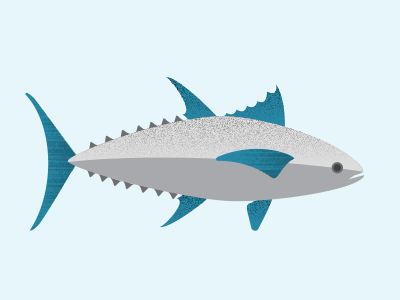 Bluefin Tuna bluefintuna ocean infographics sealife