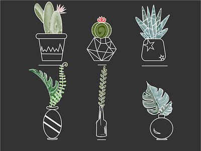 Сactus 2 green black cactus 2d illustration design vector graphic design