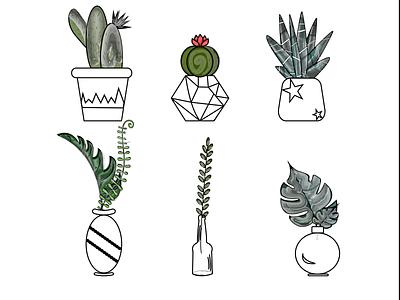 Cactus 3 white green cactus 2d illustration design vector graphic design
