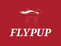 Flypup