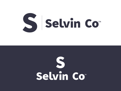 Selvin Co Brand Refresh wordmark logotype typography