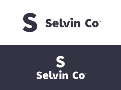 Selvin Co Brand Refresh wordmark logotype typography