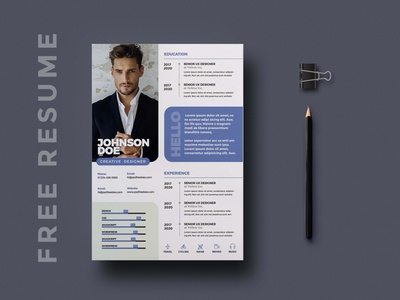 Free Professional CV/Resume Template
