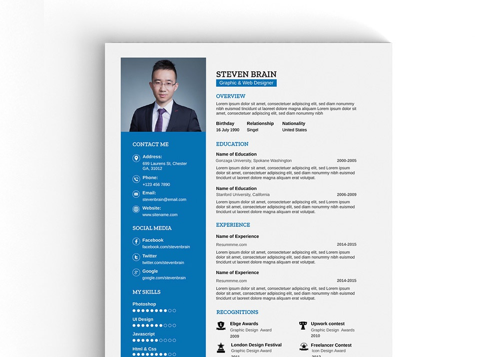 Free A4 Vector Professional Resume Template By Andy Williams