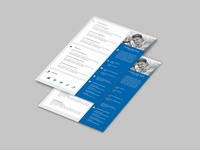 Free Expert Resume Template