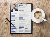 Free Lawyer CV Template