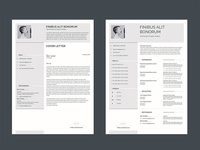 Free Eye Catchy Resume Template