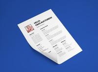 Free Dynamic CV Template
