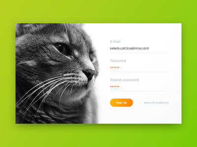 Sign Up cat dailyui ui sign in sign up login form