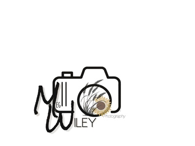 Logo/Branding  - Wiley photography design branding graphic design logo