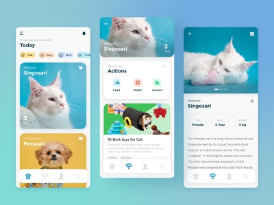 iNgon Pet Tracking simple mobile app tracking app pet app android ios tracking pets pet ux mobile ui mobile uiuix mobile design clean ux ui