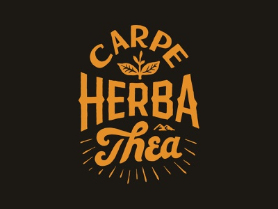 Carpe Herba Thea branding handlettering vintage merch design typography skitchism t-shirt lettering illustration