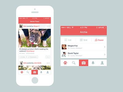 Dog App Updates iphone app ios7 dog flat application newsfeed profile ui icon