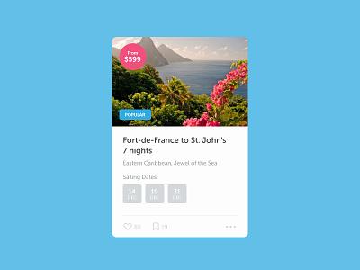 Cruise Widget UI ux ui notch flat widget app application web cruise