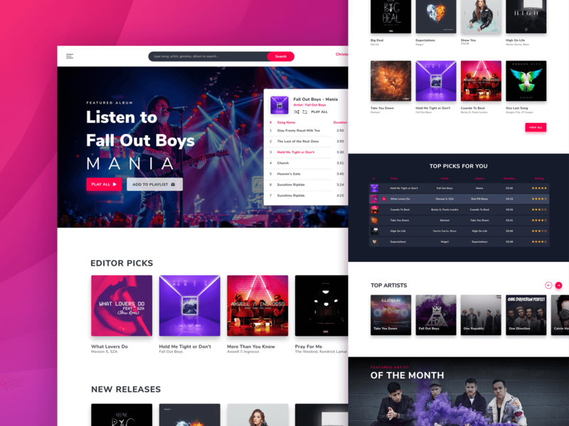 Online Music Streaming Website music player application online streaming music app concept ui website design landing page
