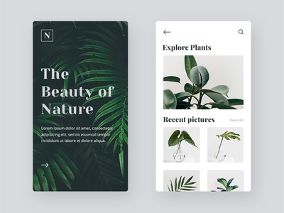 nature_mini_1x.jpg
