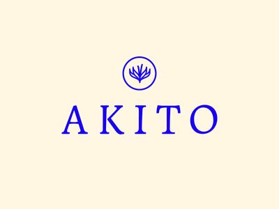 Akito Logo Design