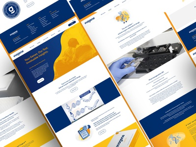 DNA Website pharmaceutical medical ui design ux  ui website webdesign dna