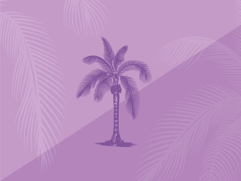 purple palm
