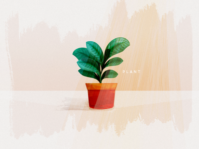 Potted Plant texture illustration green leafy plant